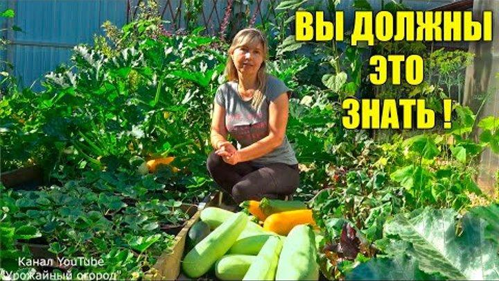 урожайный огород обо всем все видео