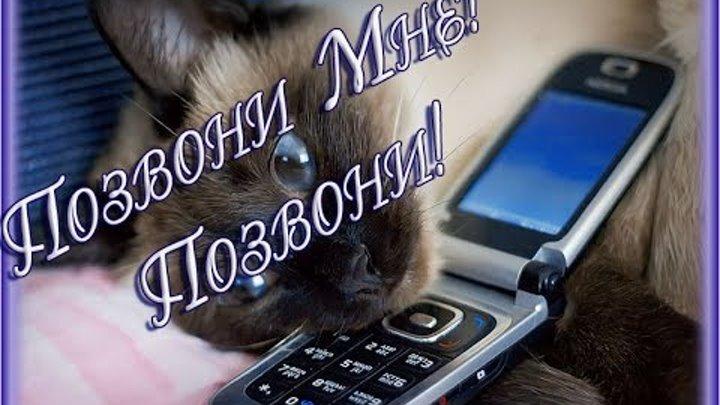 Открытки позвони
