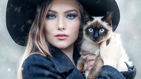 4 неожиданных факта о жизни женщин и кошек