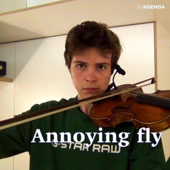 Мальчик-скрипач пародирует звуки любых животных