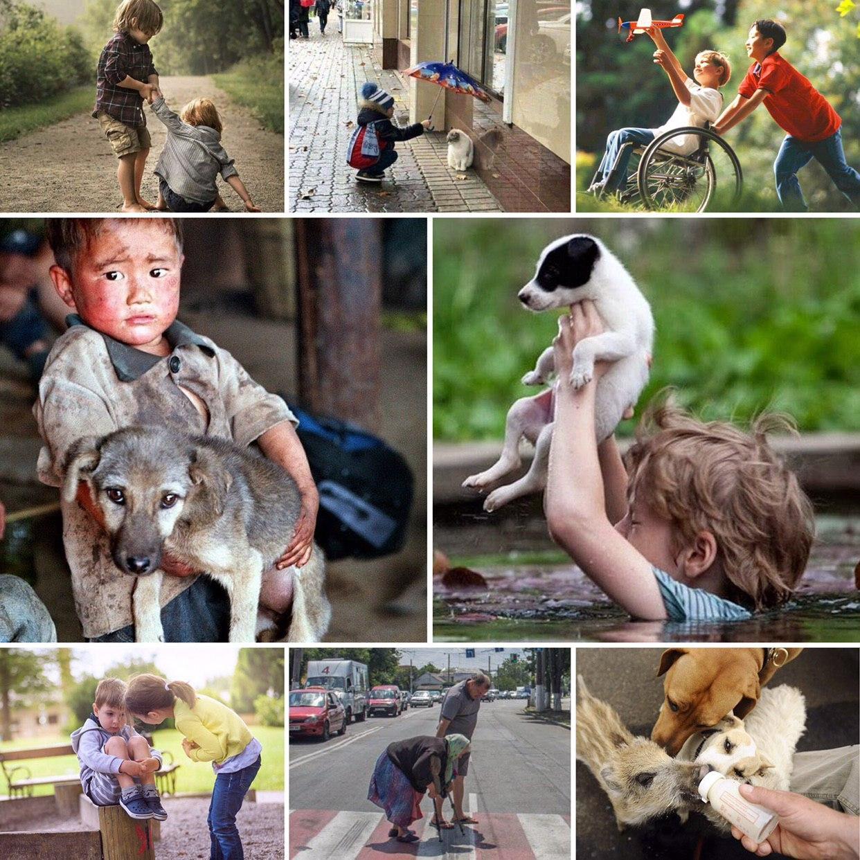 составляющие доброты фото часть