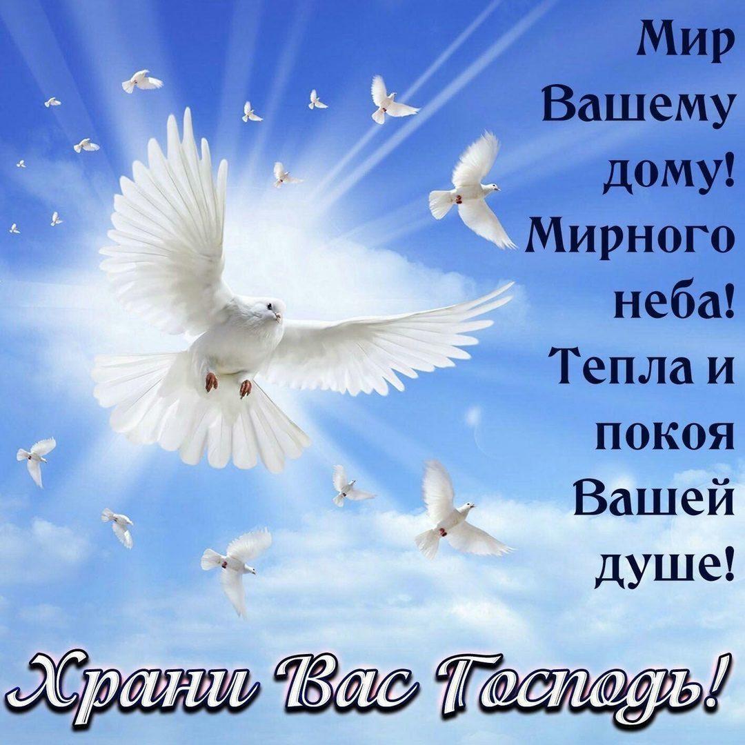 Поздравление с днем рождения мирного неба