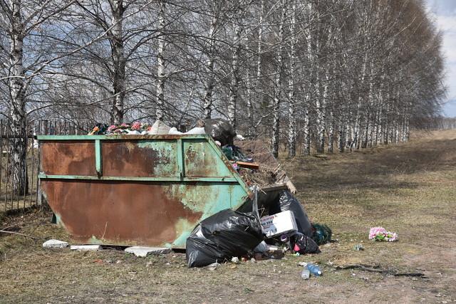 Не мусорьте у берёз!