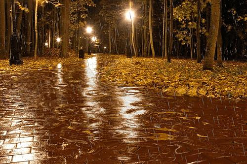 Осенний дождь гифки, словом всегда прикол