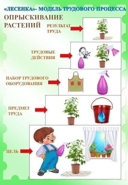 Картинки труда по уходу за растениями множество
