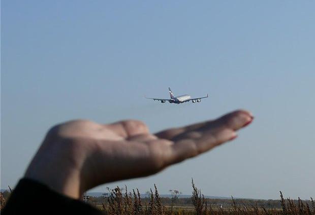 возвращайся домой самолеты картинки отзыв