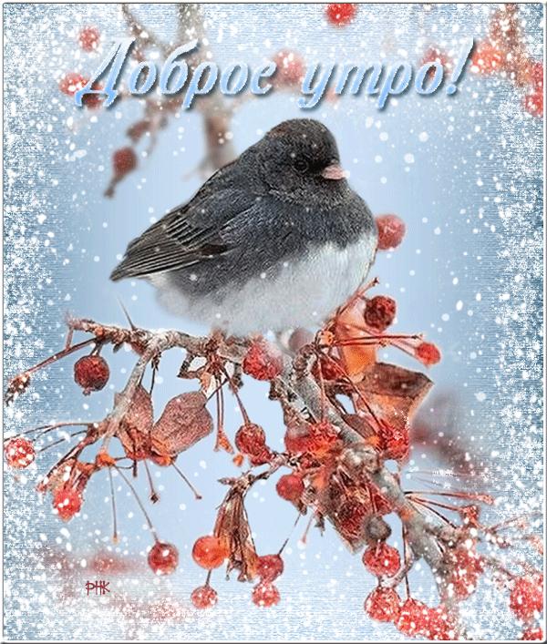 Поздравительные открытки зимние с добрым утром