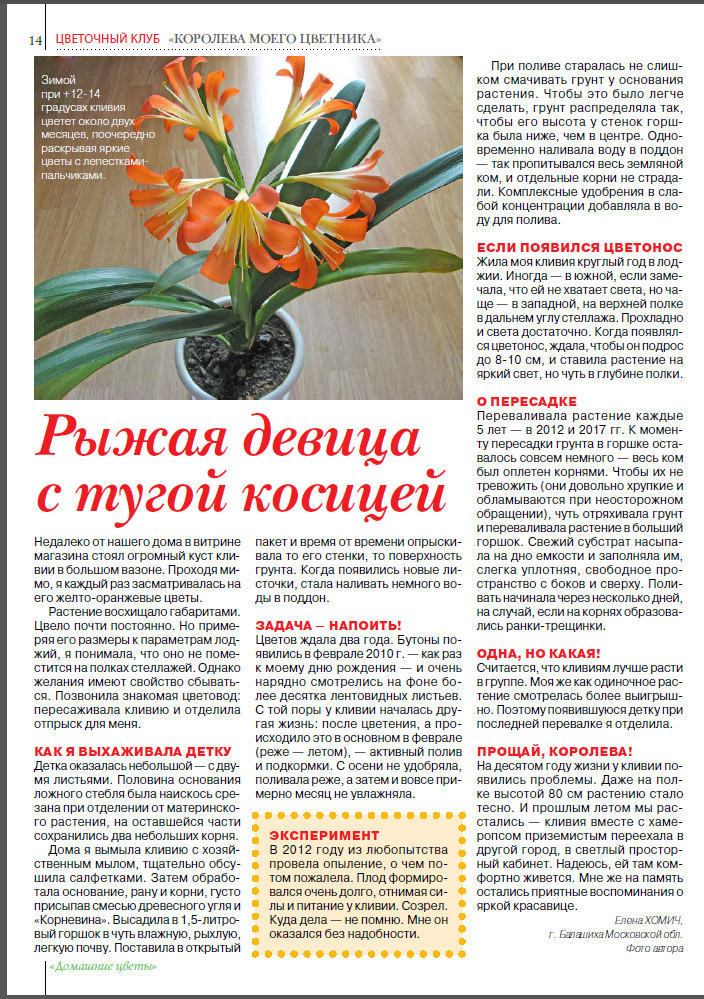 статьи о растениях из  газет и журналов - Страница 8 I?r=AyH4iRPQ2q0otWIFepML2LxRDn-8o6rqc-K6E5LPq6CuTA