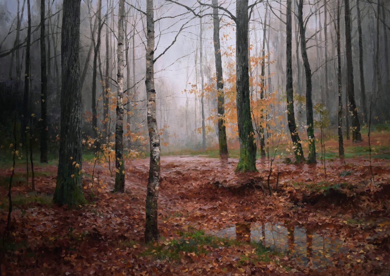 Осень. После дождя