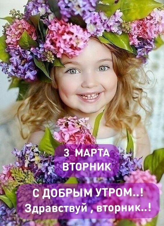 красивые картинки здравствуй новый день вторник доски