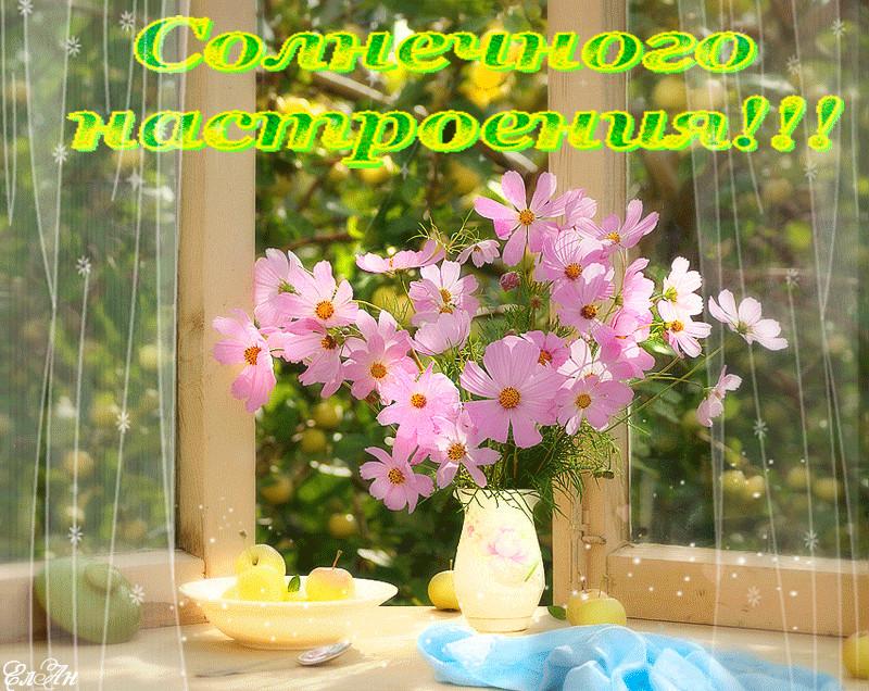 том с добрым утром самые красивые картинки с природой и цветами елизавета