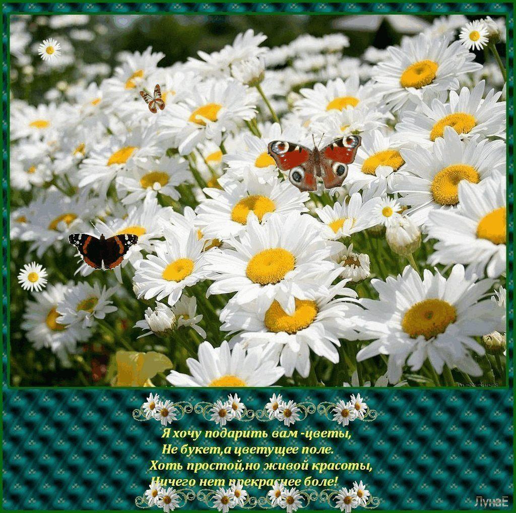 Юбилей, открытка подари мне цветы