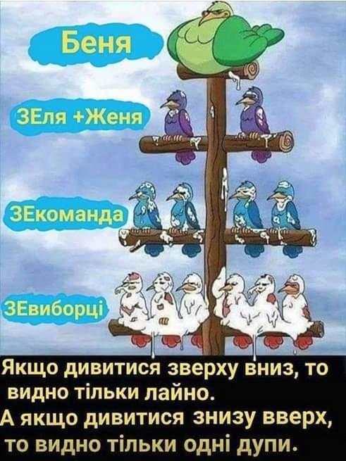 Зеленский внес в Раду законопроект об обеспечении избирательных прав военнослужащих - Цензор.НЕТ 8016