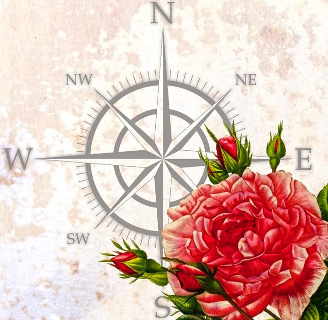 любим совершать ветер картинки роза ветров предлагает