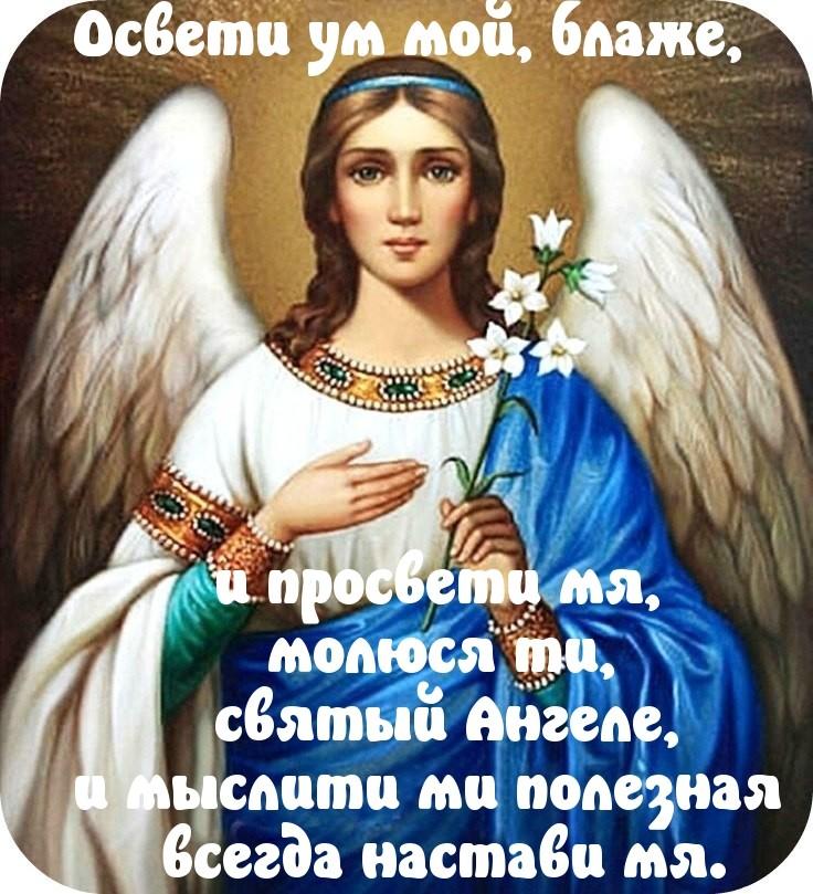 стенах музея пожелания ангела вам выложила фото, котором
