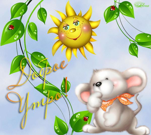 доброе утро солнышко картинки красивые интересные новые охотник