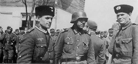Сколько казаков воевало на стороне Германии