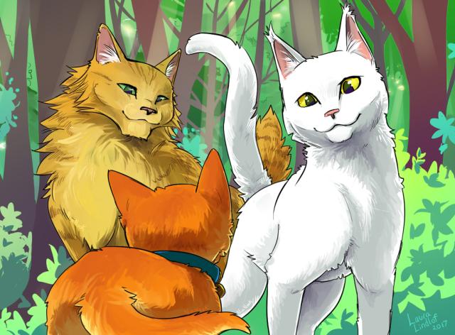 Раскраска Рыжик - кот-воитель, распечатать или скачать из ... | 472x640