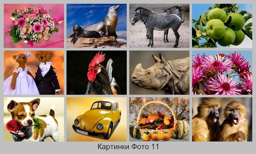 Картинки Фото