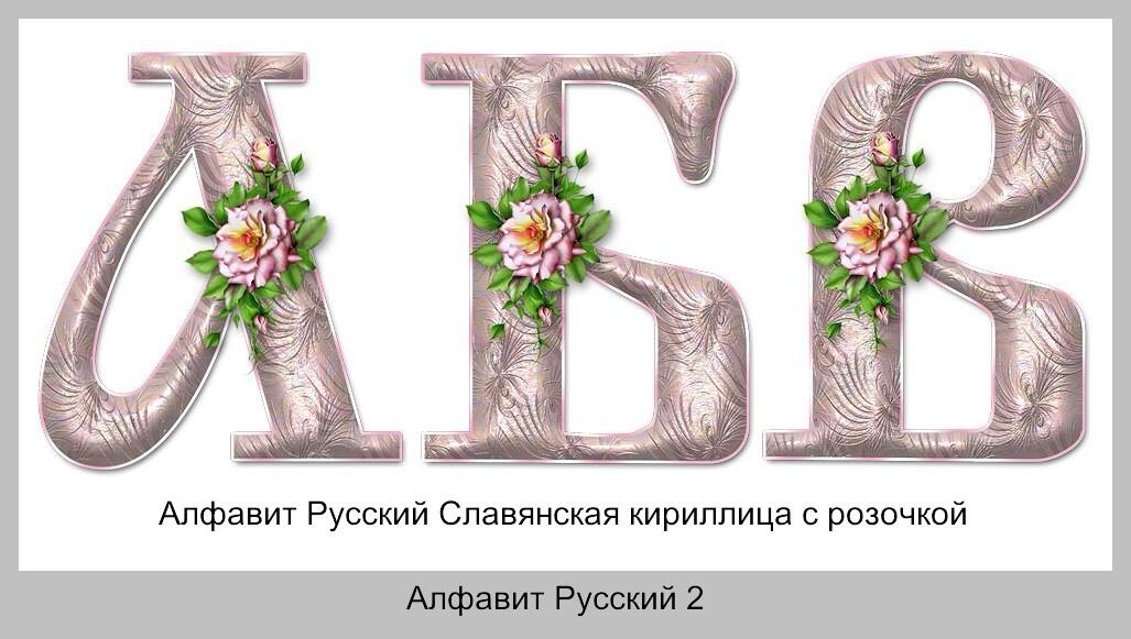 Алфавит Русский PNG Славянская кириллица с розочкой