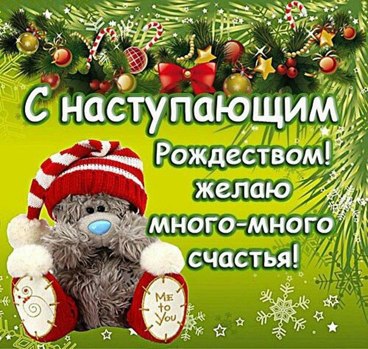 наступающее рождество красивые поздравления священным животным