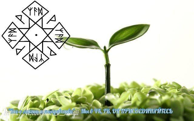 Новая жизнь (изменения 4 х сфер жизни) I?r=AyH4iRPQ2q0otWIFepML2LxRfw9xY-b4-DfWl3iJJDJBQQ