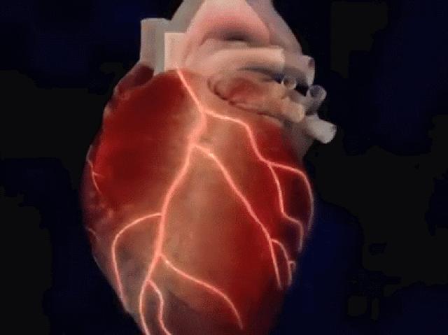 Два бьющихся сердца анимация фото