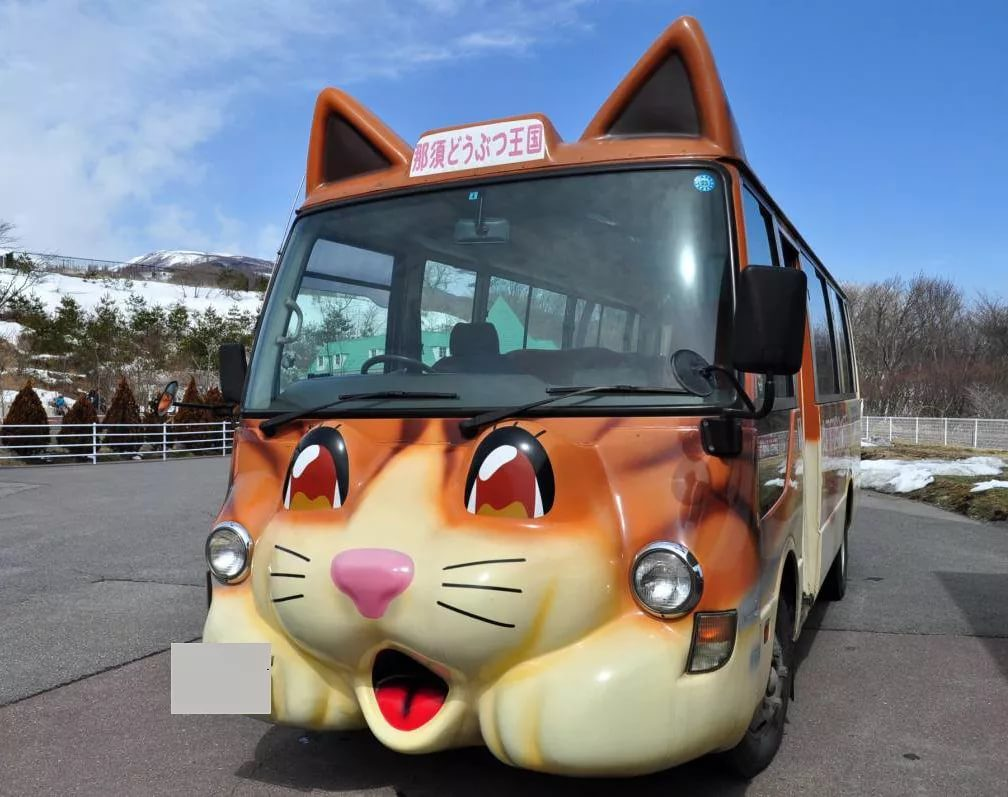 автобус с картинками животных внутри например