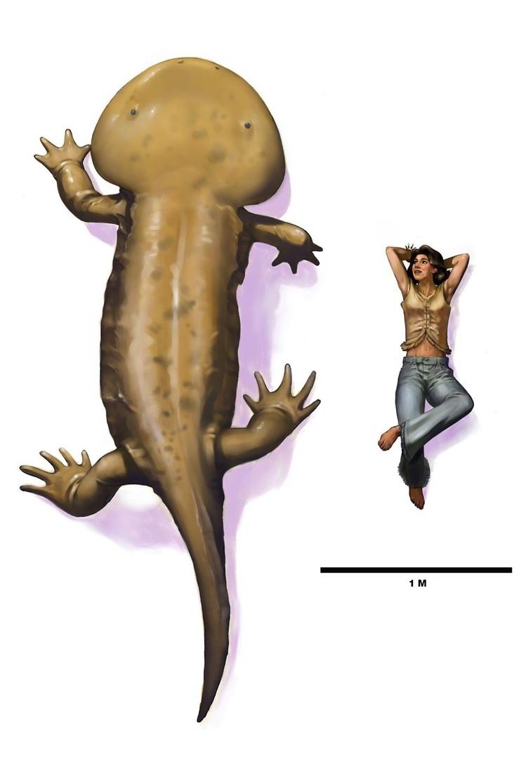 КУЛАЗУХ (Koolasuchus cleelandi)