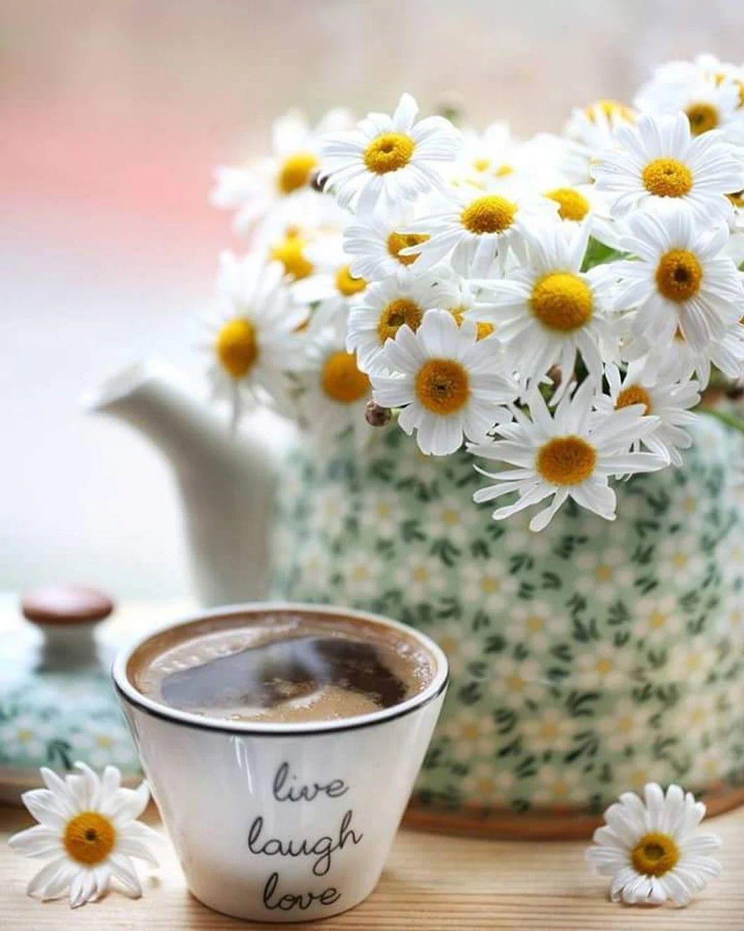 Картинки красивые с ромашками доброе утро