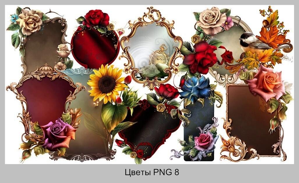 Дизайн Графика PNG Элементы