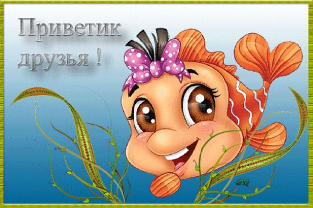 доброе утро хорошего настроения картинки гифки с рыбками поиском