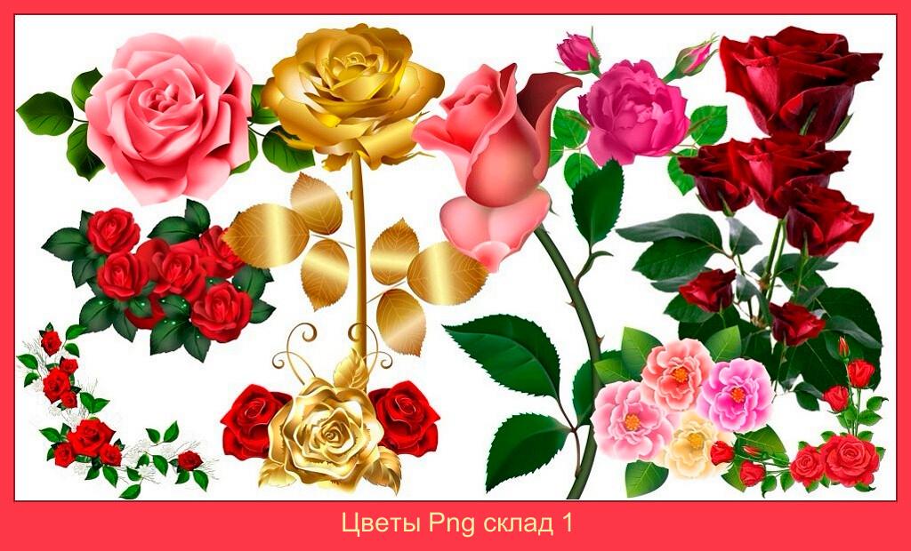 Цветы Png склад 1