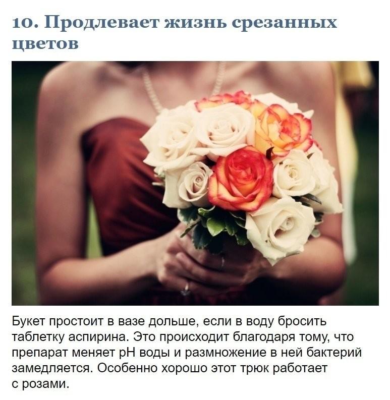 инструменты цветы должны быть без повода картинка год