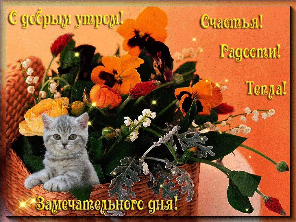 Доброе утро, открытки с добрым утром с пожеланием удачи