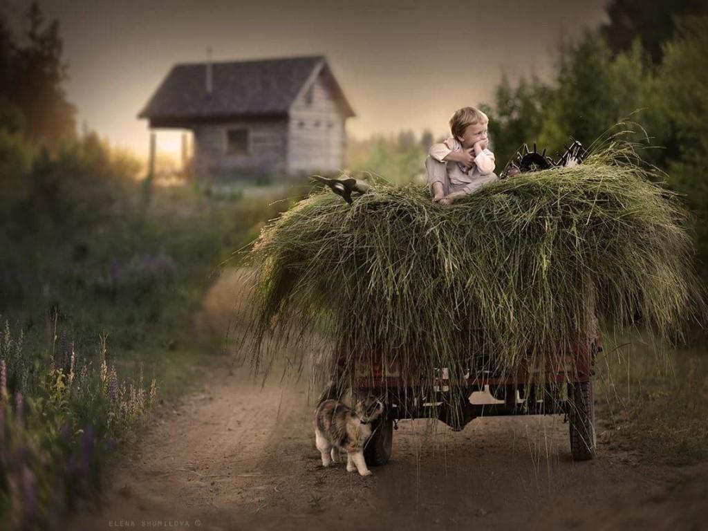 Прикольные картинки про любовь и жизнь в деревни