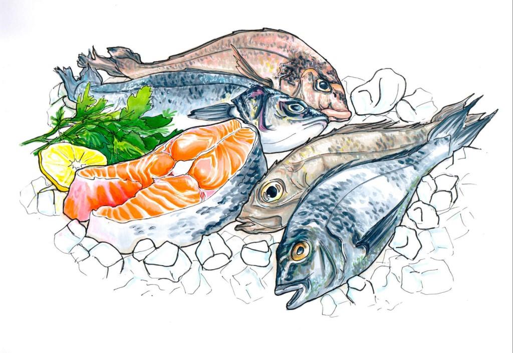 Рыбные картинки для баннера