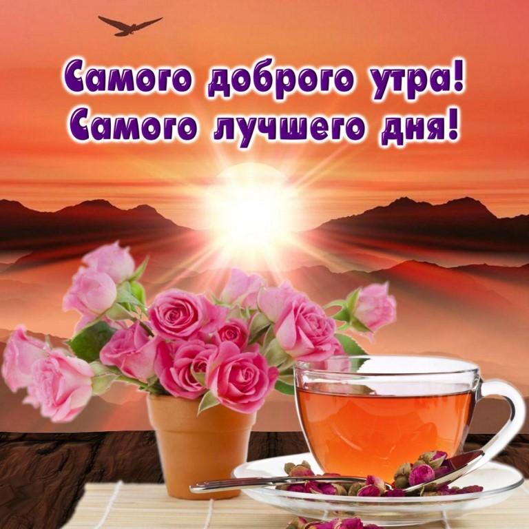 Картинки всем доброго утра и хорошего дня
