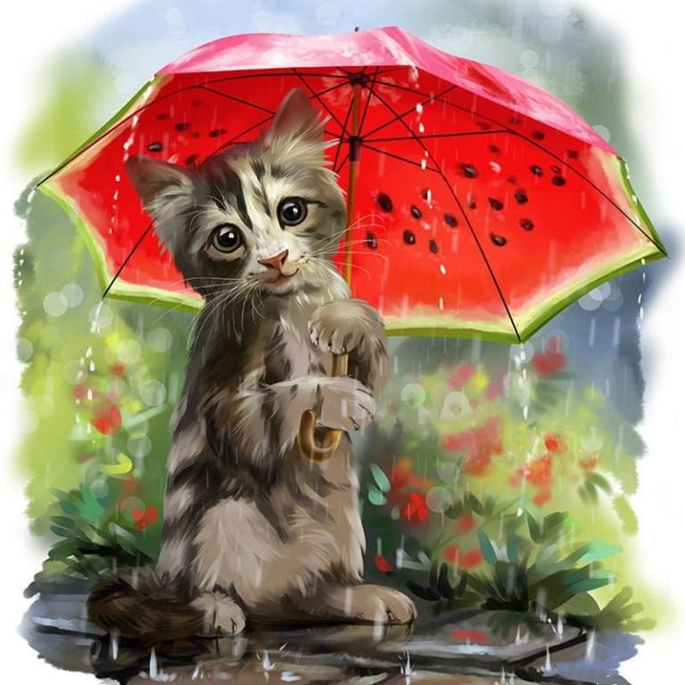 Открытка с дождиком доброе утро, февраля рубашка красивые