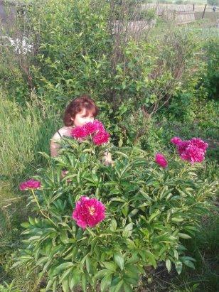 Марина в цветах