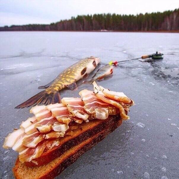 Перекус на зимней рыбалке