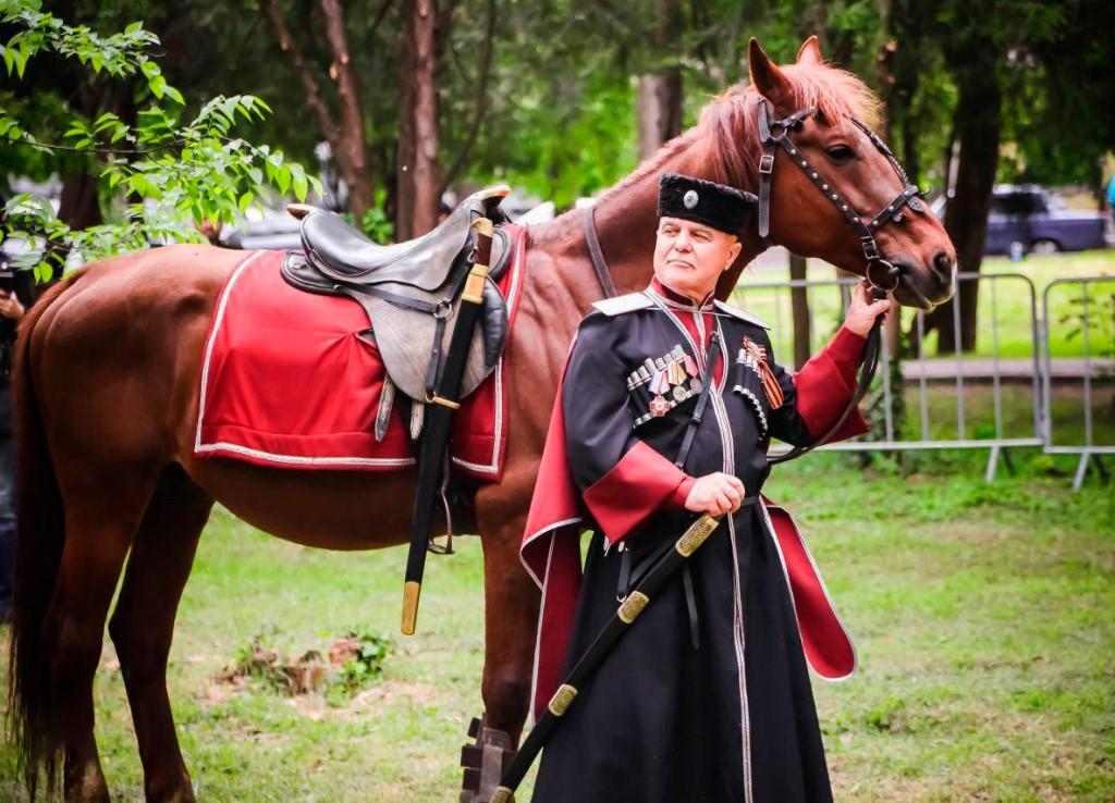 Картинки коней с казаками