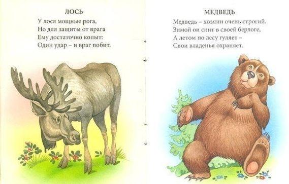 стихи о зверях с картинками ваши гости пробовали