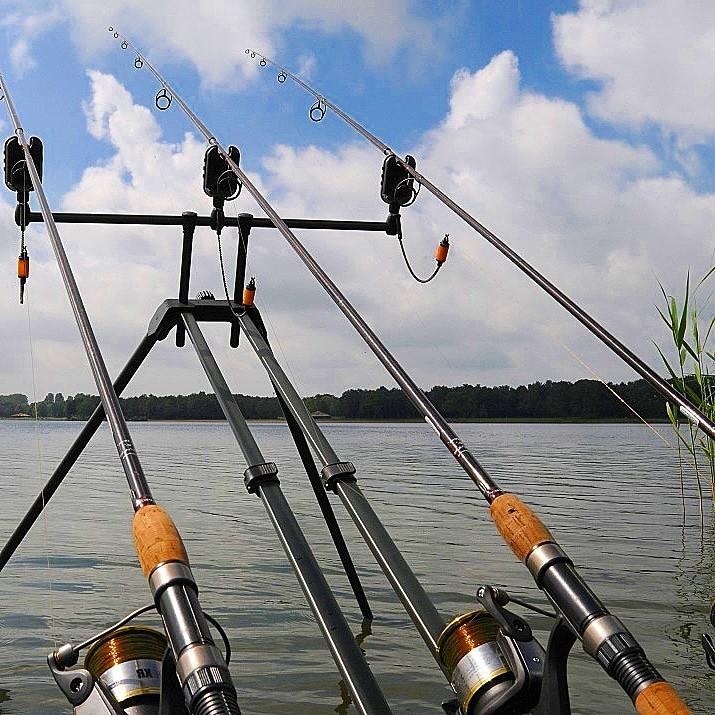 Все о фидерной рыбалке