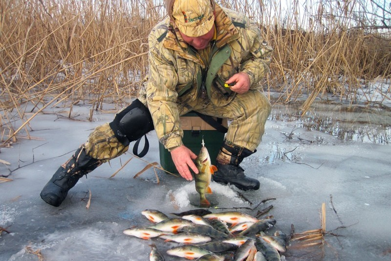 Зимня рыбалка в астрахани