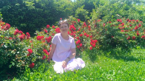Лето и цветы