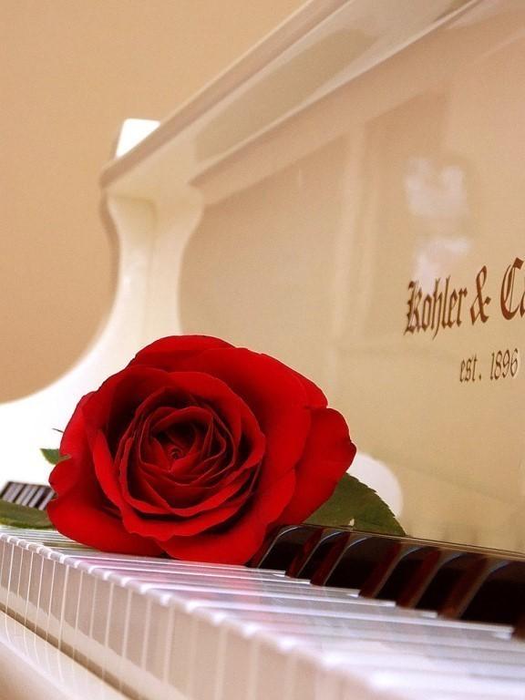 Красивые картинки педагогу фортепиано