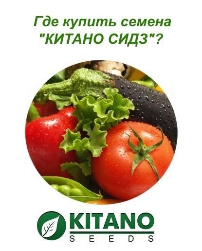 Китано Семена Официальный Сайт Интернет Магазин