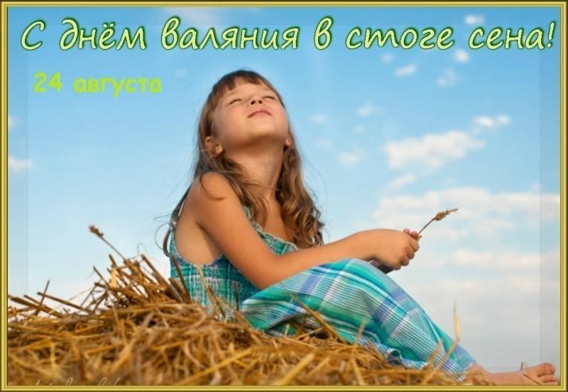 24 августа – День валяния в стоге сена.