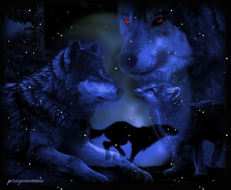 Про волков картинки анимации